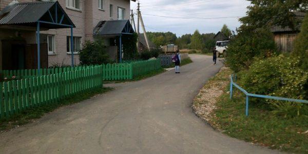 Красносельские ТОСы активно реализуют проекты местных инициатив
